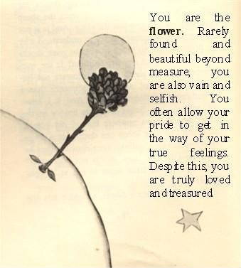 you are loved.............  [from The Little Prince by St Exupery]