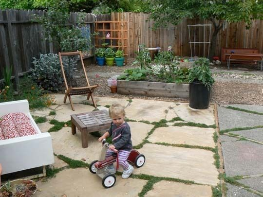 Karuna's Outdoor Oasis | No grass backyard, Large backyard ...