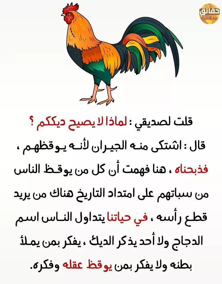 حقائق مدهشة حقائق و مقولات مدهشة حقائق مدهشة 2019 حقائق عن الحياة معلومات مفيدة جدا Funny Arabic Quotes Quran Quotes In English Wisdom Quotes Life