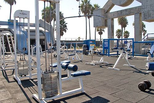 Muscle Beach Gym Check