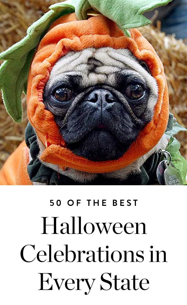 here are 50 of the best halloween celebrations in every state halloween halloweenparty - Best Halloween Celebrations