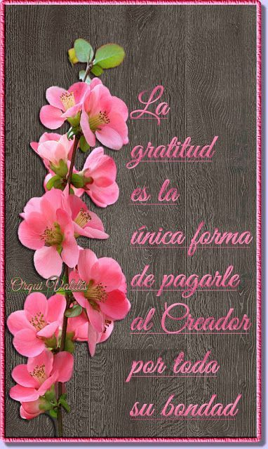 15 Ideas De Alabanza Honor Y Gloria A Dios Dios Alabanza Mensaje De Dios
