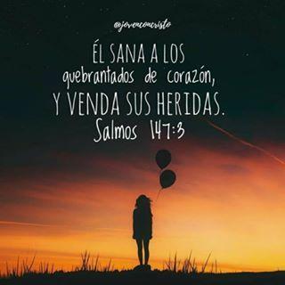 Mi Biblia Personalizada (@mibibliapersonalizada) • Fotos y videos de Instagram