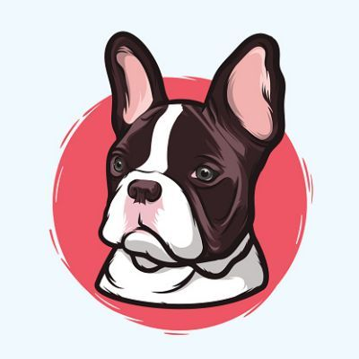 french bulldog clipart french awesome pinterest bulldog rh pinterest com au french bulldog face clipart cute french bulldog clipart