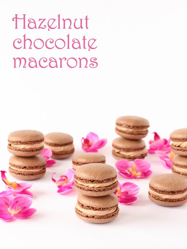 Macarons For Dessert  Great Recipes That Look So Sweet  Style