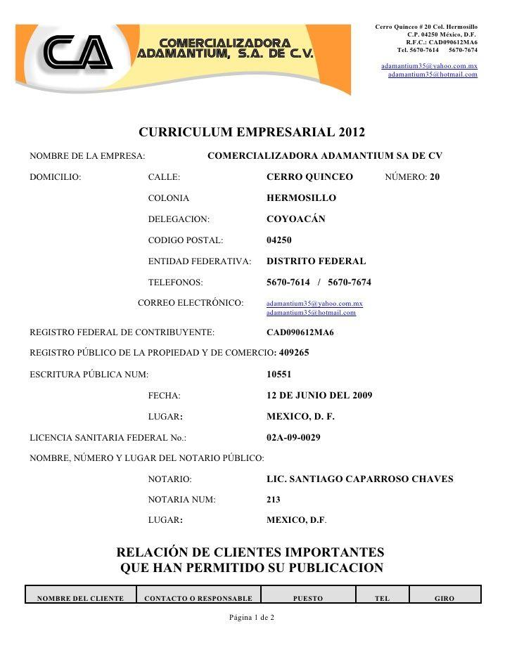Modelo De Curriculum Empresarial Modelo Curriculum
