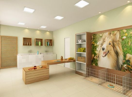 Love the huge picture grooming boarding daycare business for Dog grooming salons near me