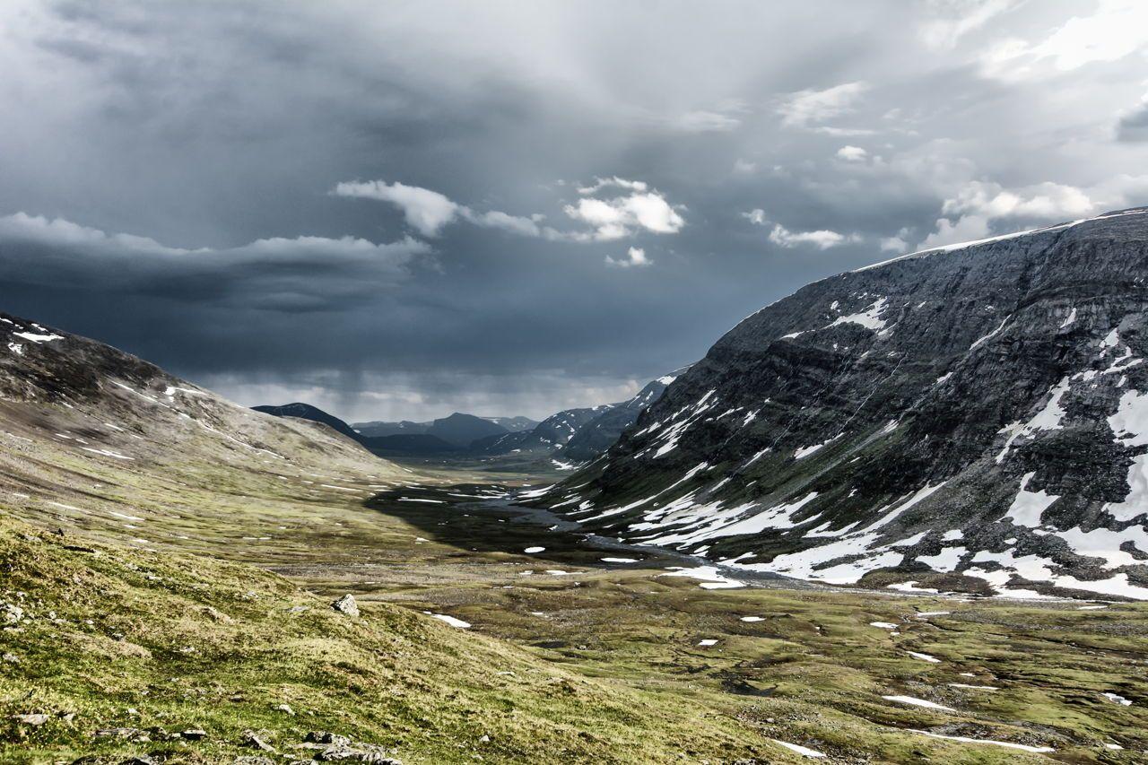 Tundra photos Natural geographic, Arctic animals, Biomes
