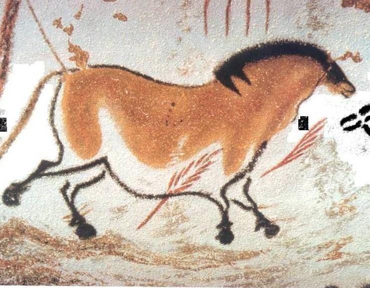 Chinese Horse, Lascaux Cave, Dordogne, France. ca. 15,000 ...