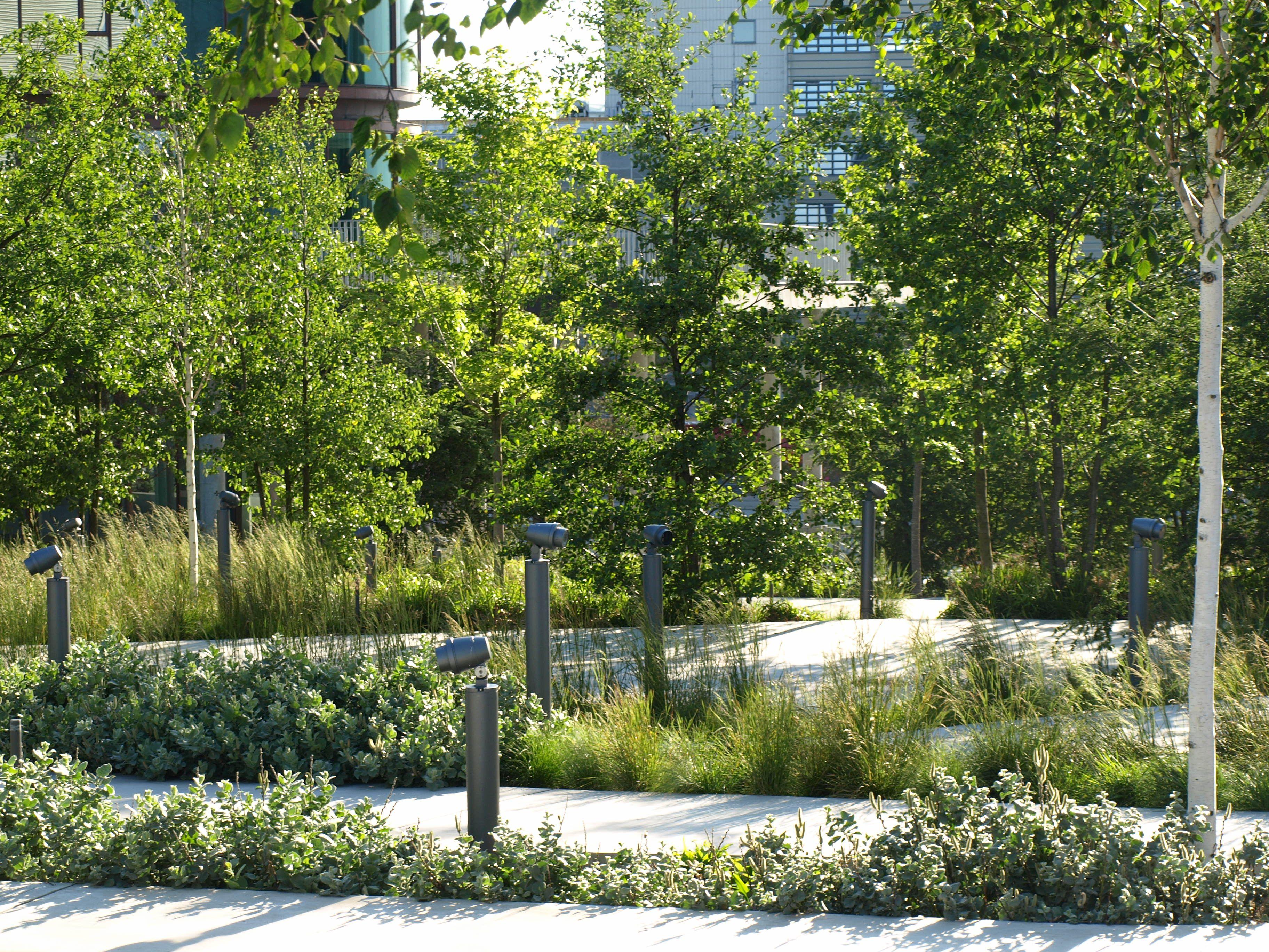 roof garden trees Intensive Roof Garden   Flowers, Plants, Gardens, Nature