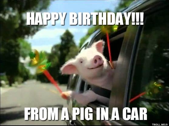 piglet birthday meme