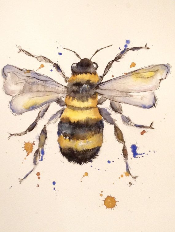 Well-liked Watercolour Painting - bee Painting - insect Painting  LW66