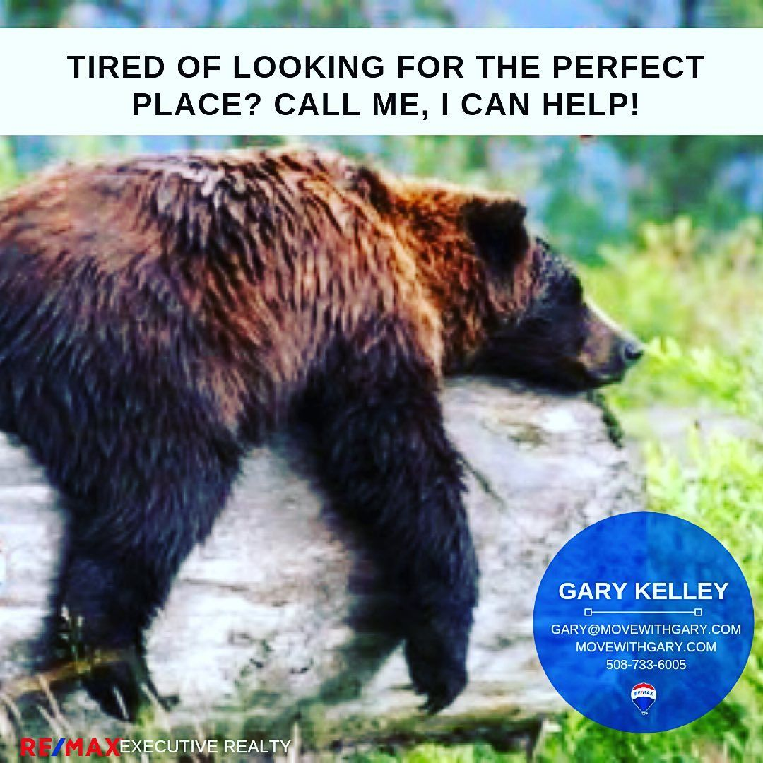 Check out our private Real Estate Mastermind with 18,600+ agents! Click the photo for more info :) It's beary important that you give me a call to help you with your real estate needs! 🐻 #realestate #realestatephoto #realestatemarket #realestateblog #remax #remaxagent #remaxrealtor #realestateexpert #remaxlife #iloverealestate #sellinghomes #realtorlife #movewithgary #realtorsofinstagram #massachusetts #realestateteam #makingtherightmove #realestatememes #buyinghomes #homesellingjourney #realto