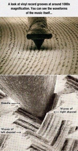 A Vinyl Record Up Close Imglulz Funny Pictures Meme