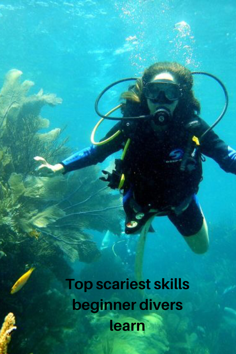 Top Scariest Skills For Beginner Scuba Divers In 2020 Open Water Diving Fear