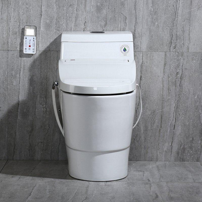 DualFlush Elongated OnePiece Toilet With Bidet Seat