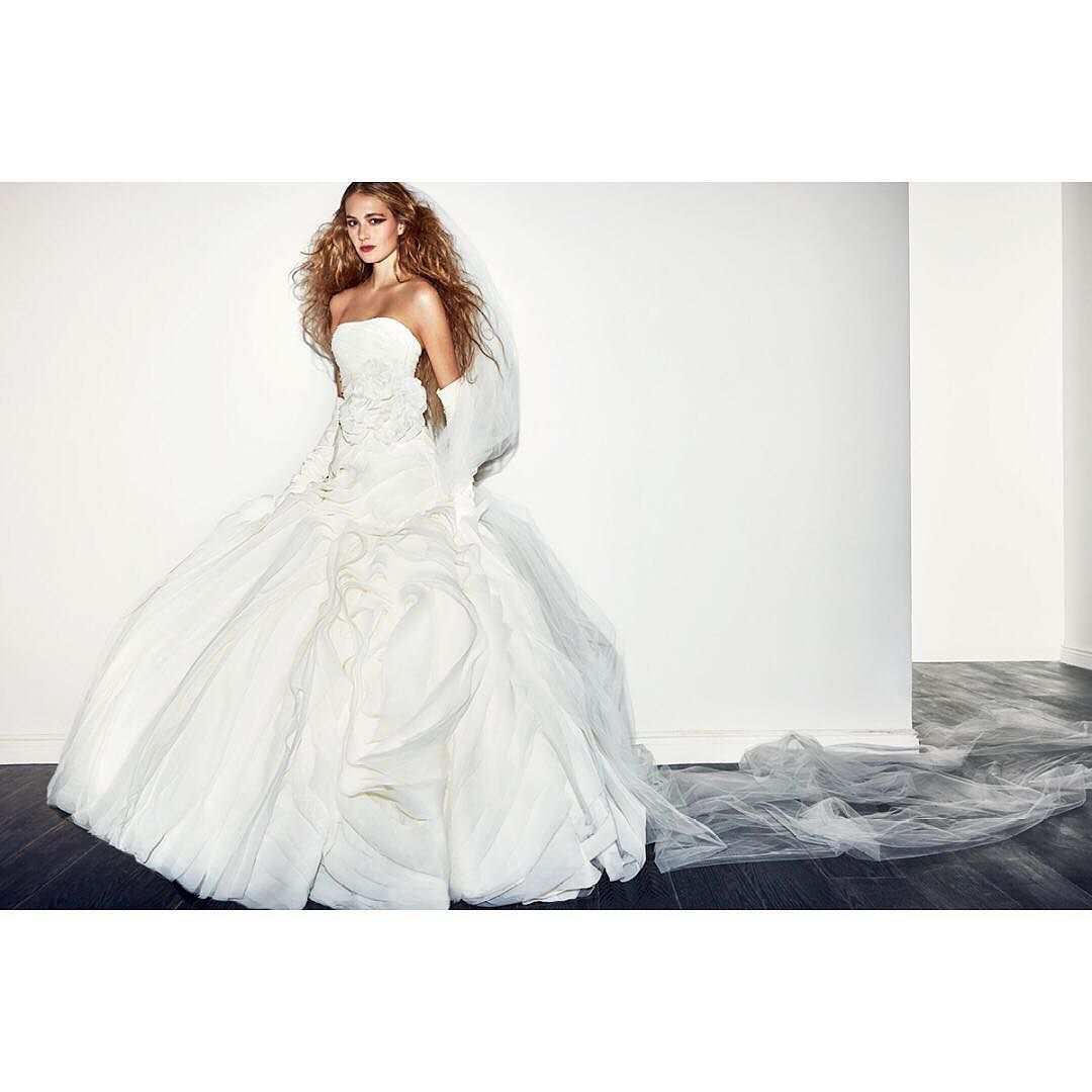 Vera wang plus size wedding dresses  Discover the WHITE by VeraWang Spring  Ad Campaign