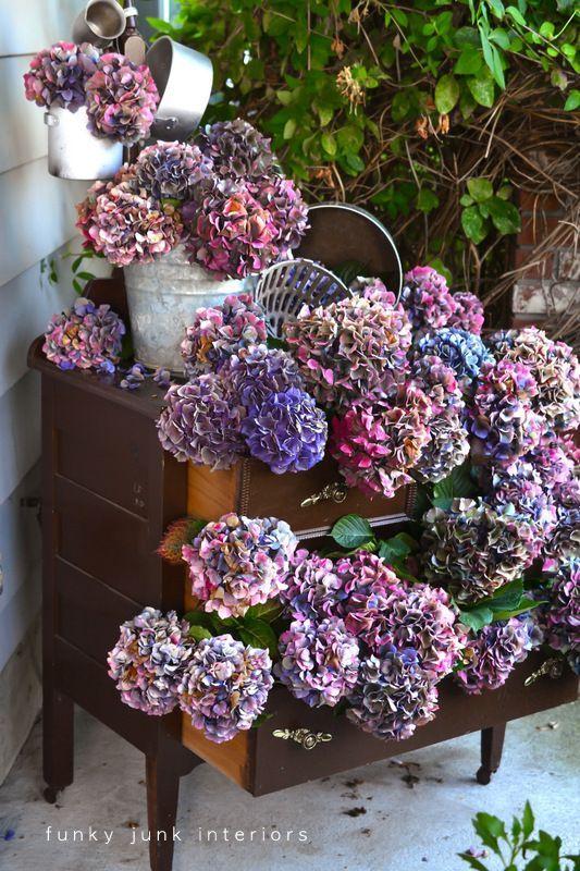Forever Beautiful Buckets of Hydrangeas on a Ladder Hydrangea