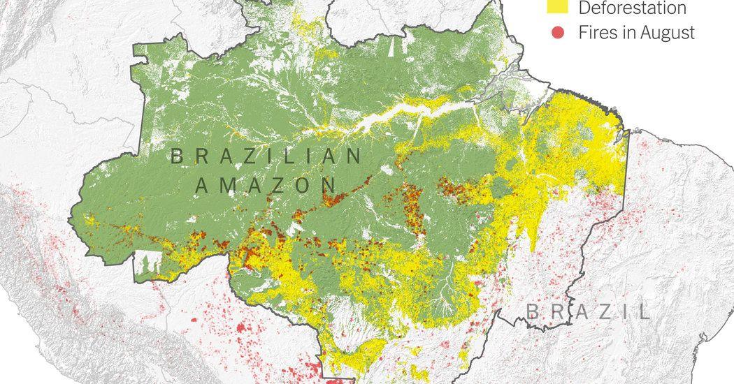 Untitled Bbc News Planet Amazon Rainforest World Rainforest