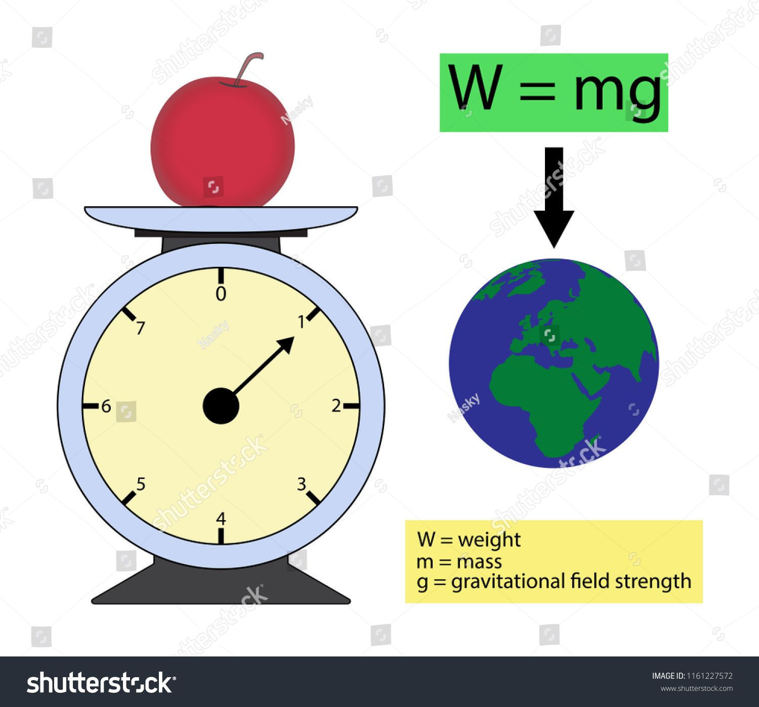 Illustration Of Physics The Weight Of An Object Is The