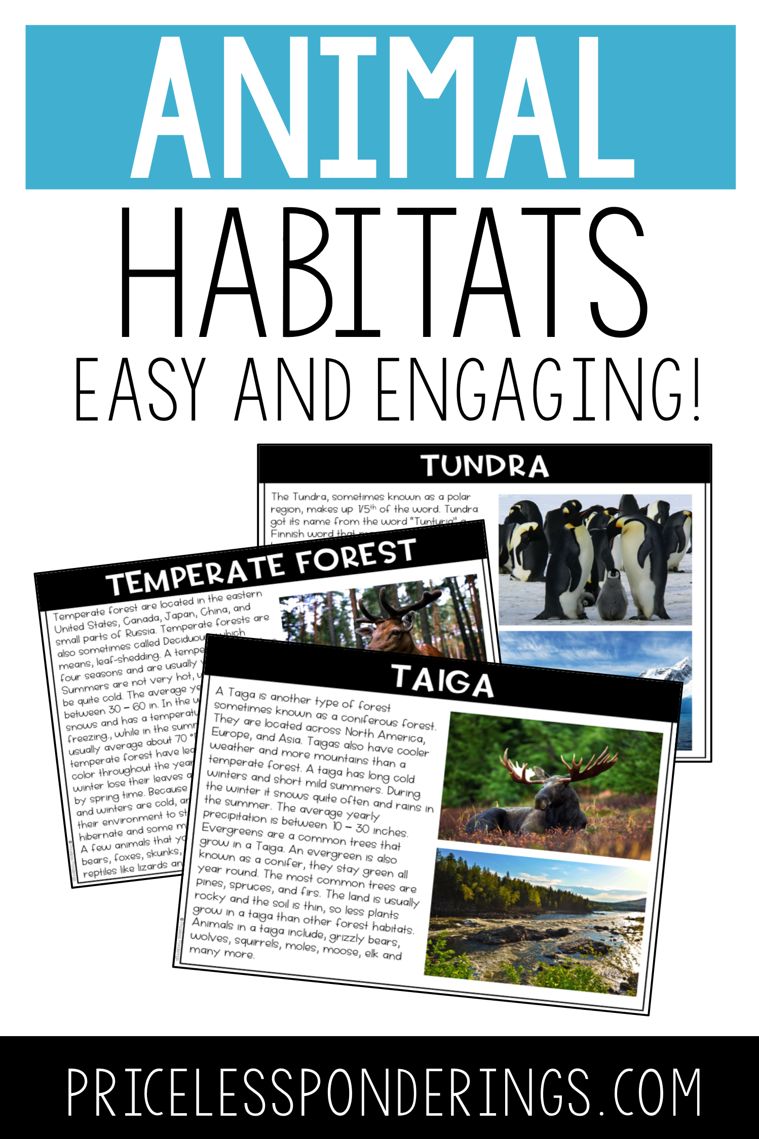 Animal Habitats And Biomes Activities And Worksheets
