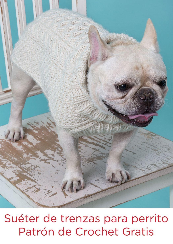 Suéter de trenzas para perrito Instrucción con agujas | doggie duds ...