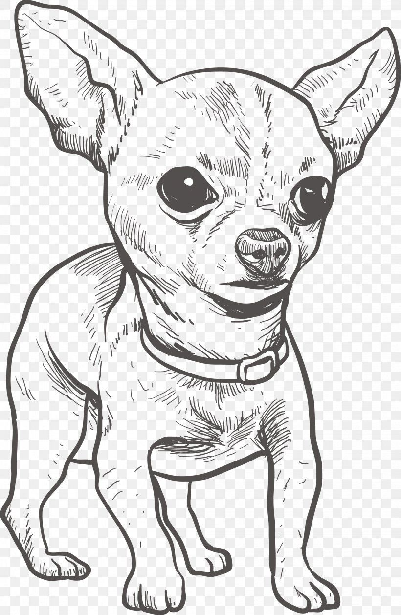 Chihuahua Puppy Drawing Illustration Png 1996x3063px Plakette Hund Creme Chihuahua Hundeaufkleber Chihuahua Kurzhaar Name Auto Aufkleber Chihuahua Hunderasse In 2020