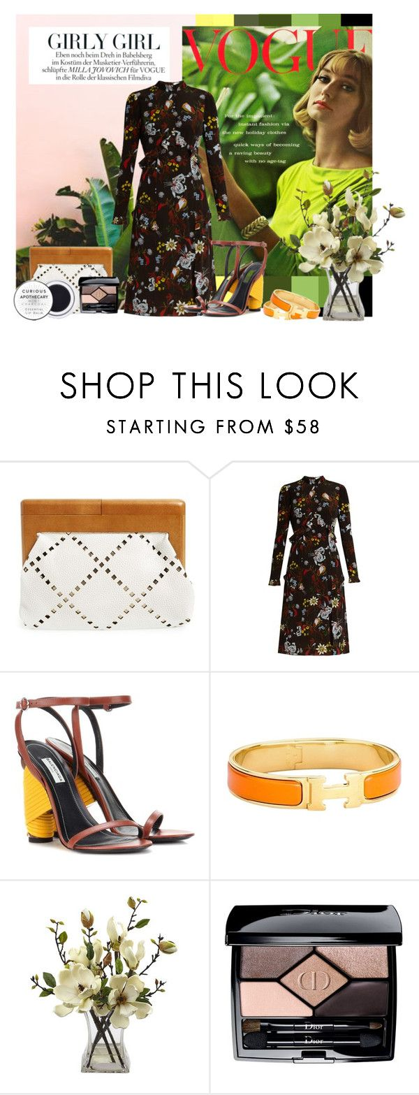 """Untitled #188"" by kiwipeach ❤ liked on Polyvore featuring Millà, Sondra Roberts, Erdem, Balenciaga, Hermès and Christian Dior"