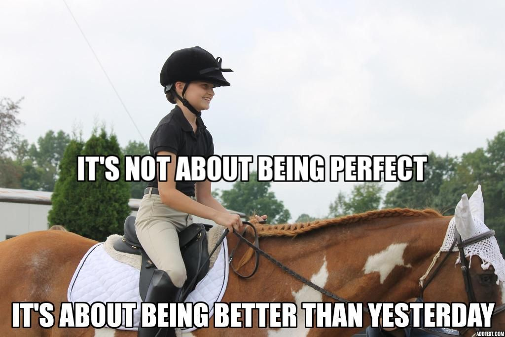2014 Equestrian Blog In Review Writing Of Riding Equestrian Memes Horse Quotes Funny Horse Riding Quotes