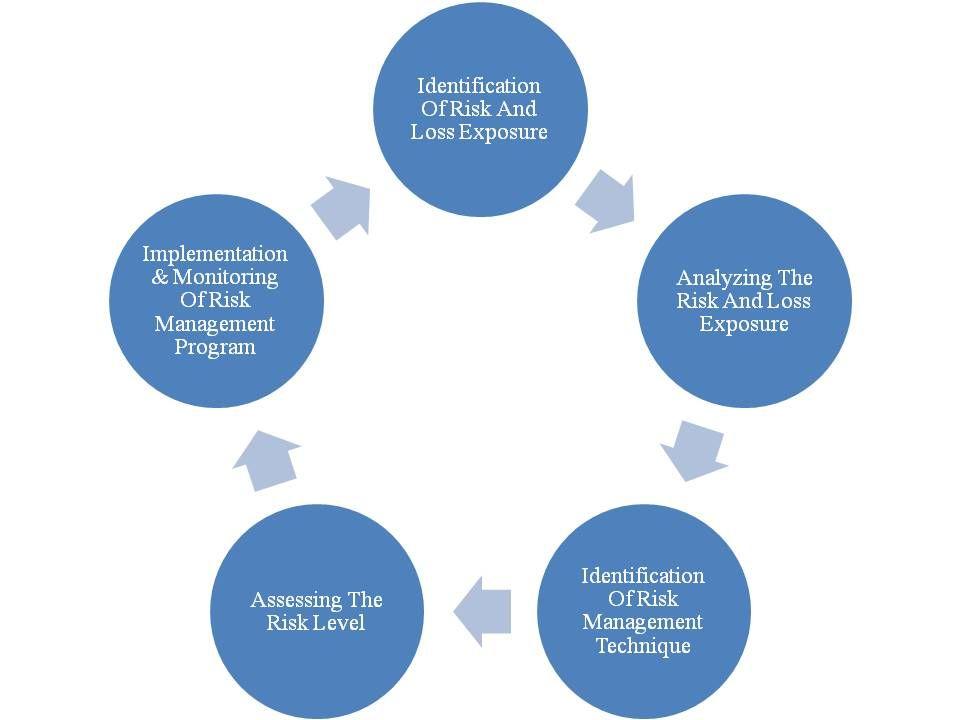 Business law exam essay