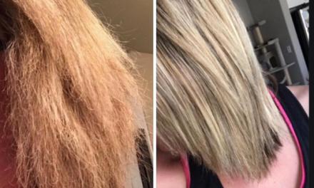 وصفات وتجارب عن فوائد منقوع اللبان الذكر للشعر شعر بشرة وشعر Good Shampoo And Conditioner Long Hair Styles Dyed Hair