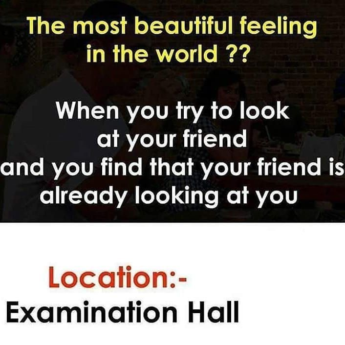 Funny College Meme Friends Quotes Funny Fun Quotes Funny Exam Quotes Funny