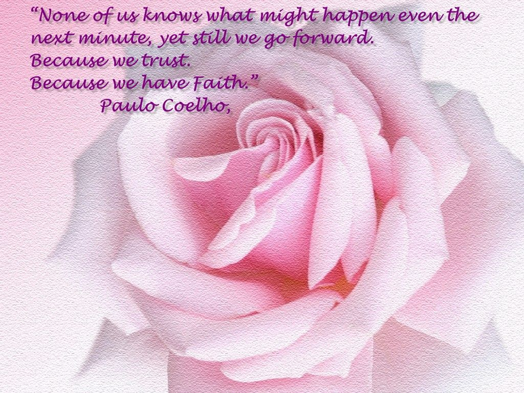 beautiful pictures of roses with quotes pink rose Quotes