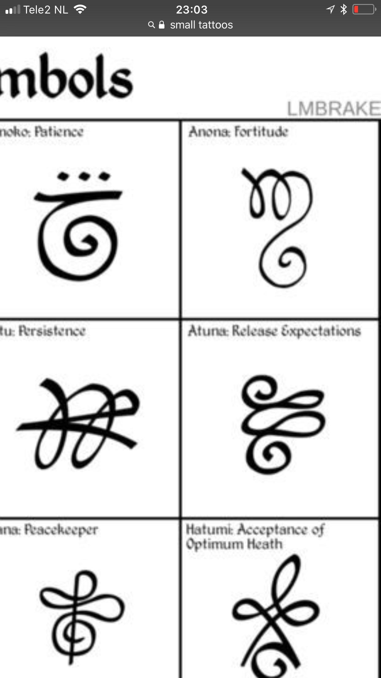 Fortitude Persistence Symbolic Tattoos Small Tattoos Tattoos