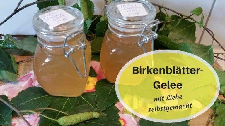 Birkenblatter Gelee Strahlemensch In 2020 Gelee Birke Zitronenmelissensirup