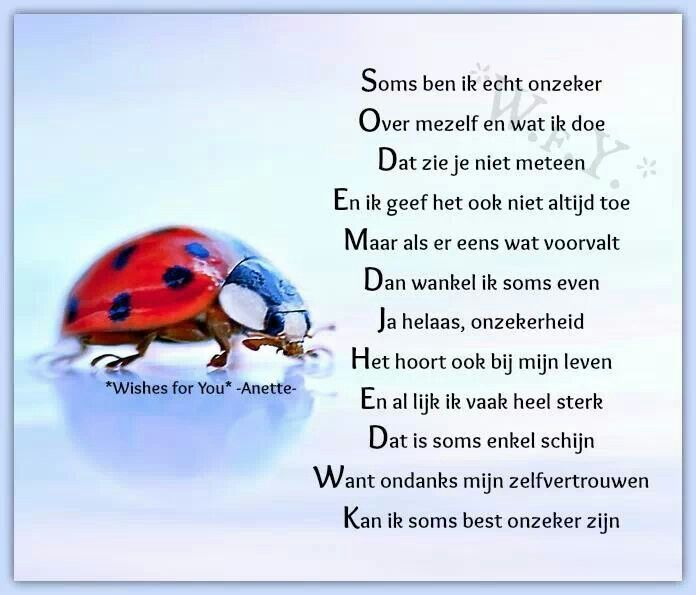spreuken over onzekerheid Onzekerheid | Spreuken en teksten   Quotes, Poems en Dutch quotes spreuken over onzekerheid