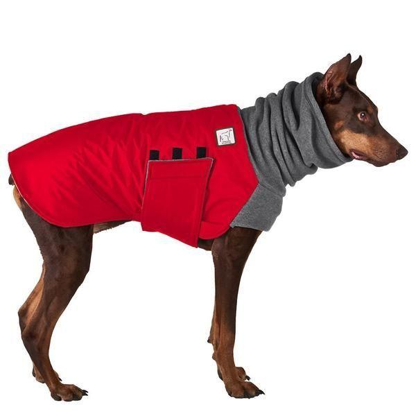 Doberman Pinscher Winter Coat Dog winter coat, Doberman