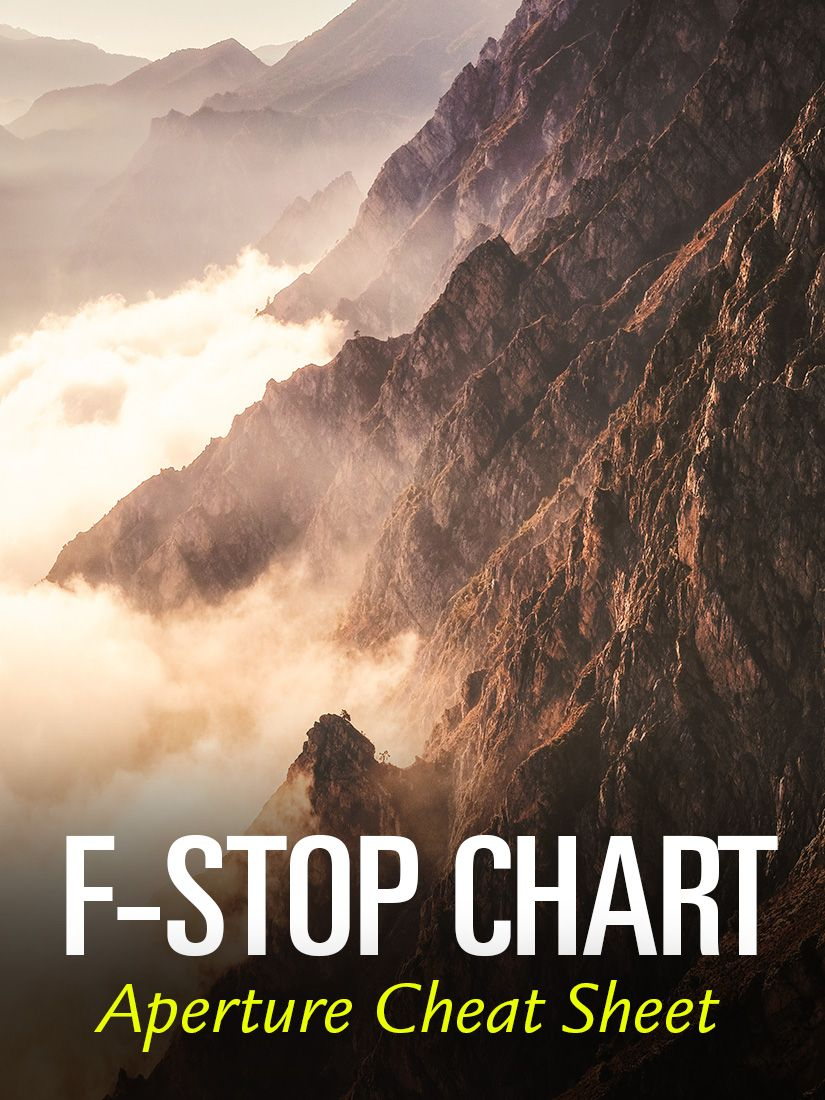 Chart Infographic Depth Of Field Aperture Photography Tips Lens Openness