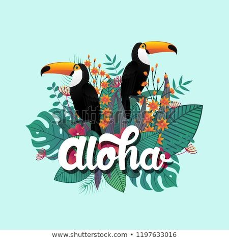 Tropical Banner Design Template Leaf And Toucan Birds Aloha Poster Jungle