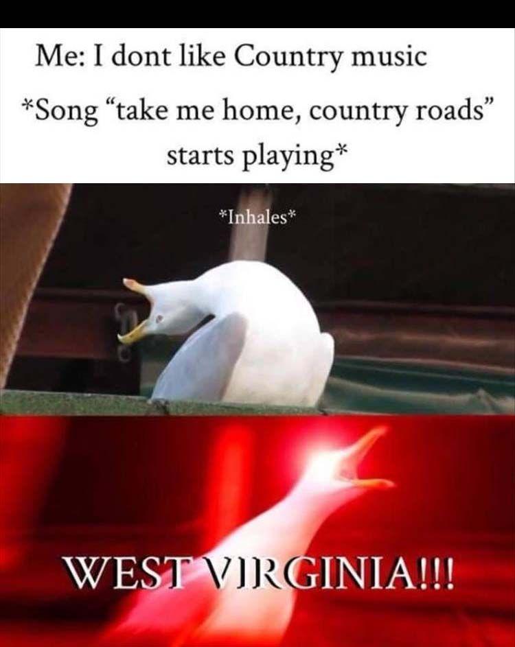 Morning Funny Memes 36 Pics Music Memes Funny Really Funny Memes Funny Memes