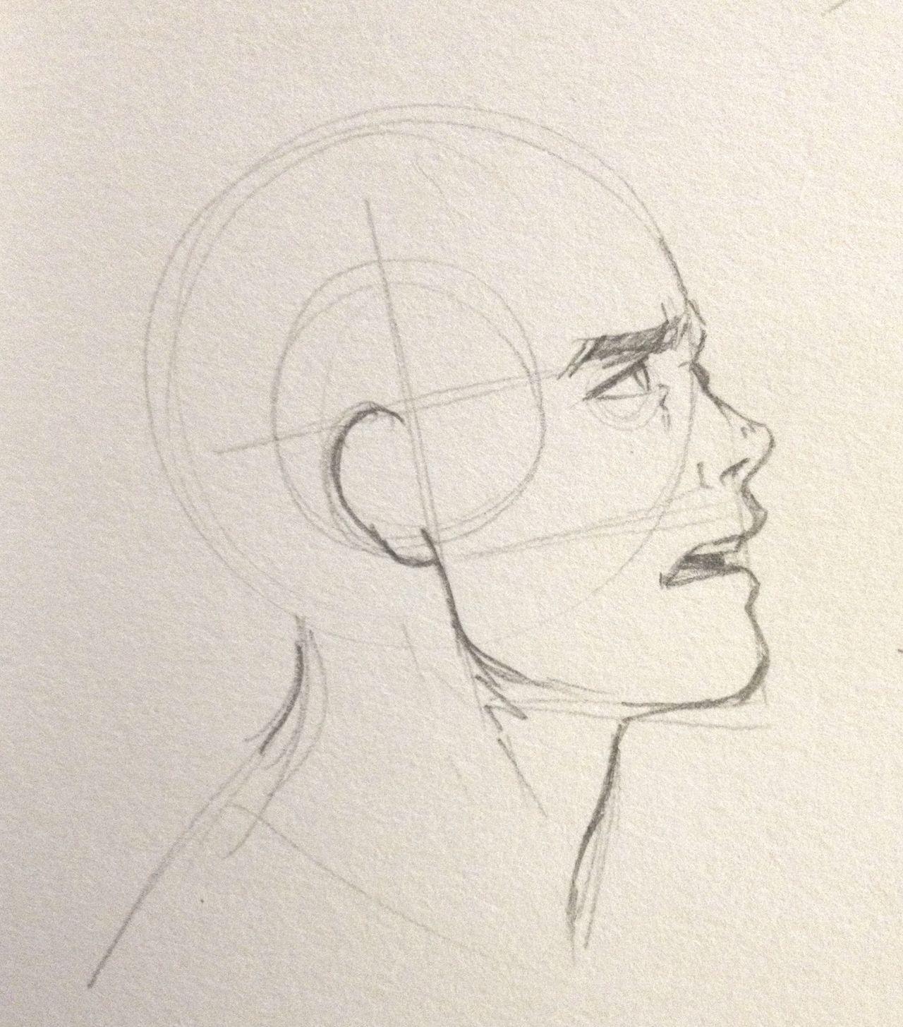 male head profile ref art pinterest art tutorials tutorials