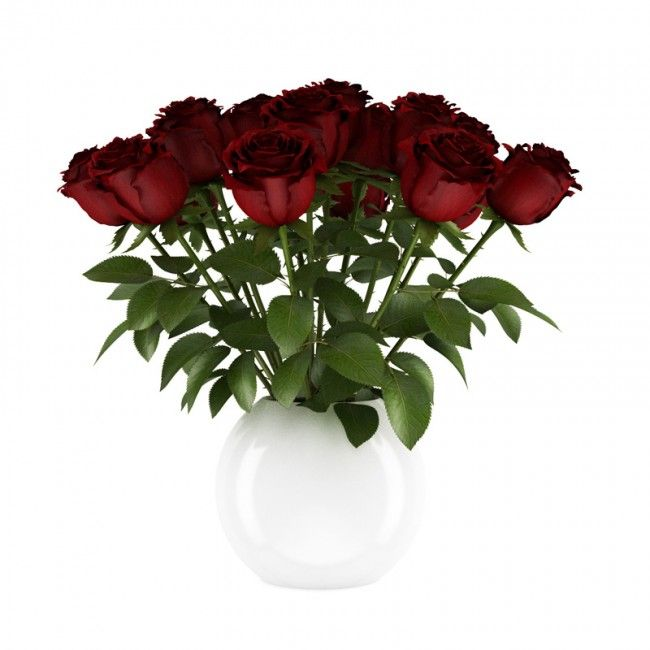 Vrayworld Red Roses Red Roses White Vases Vase