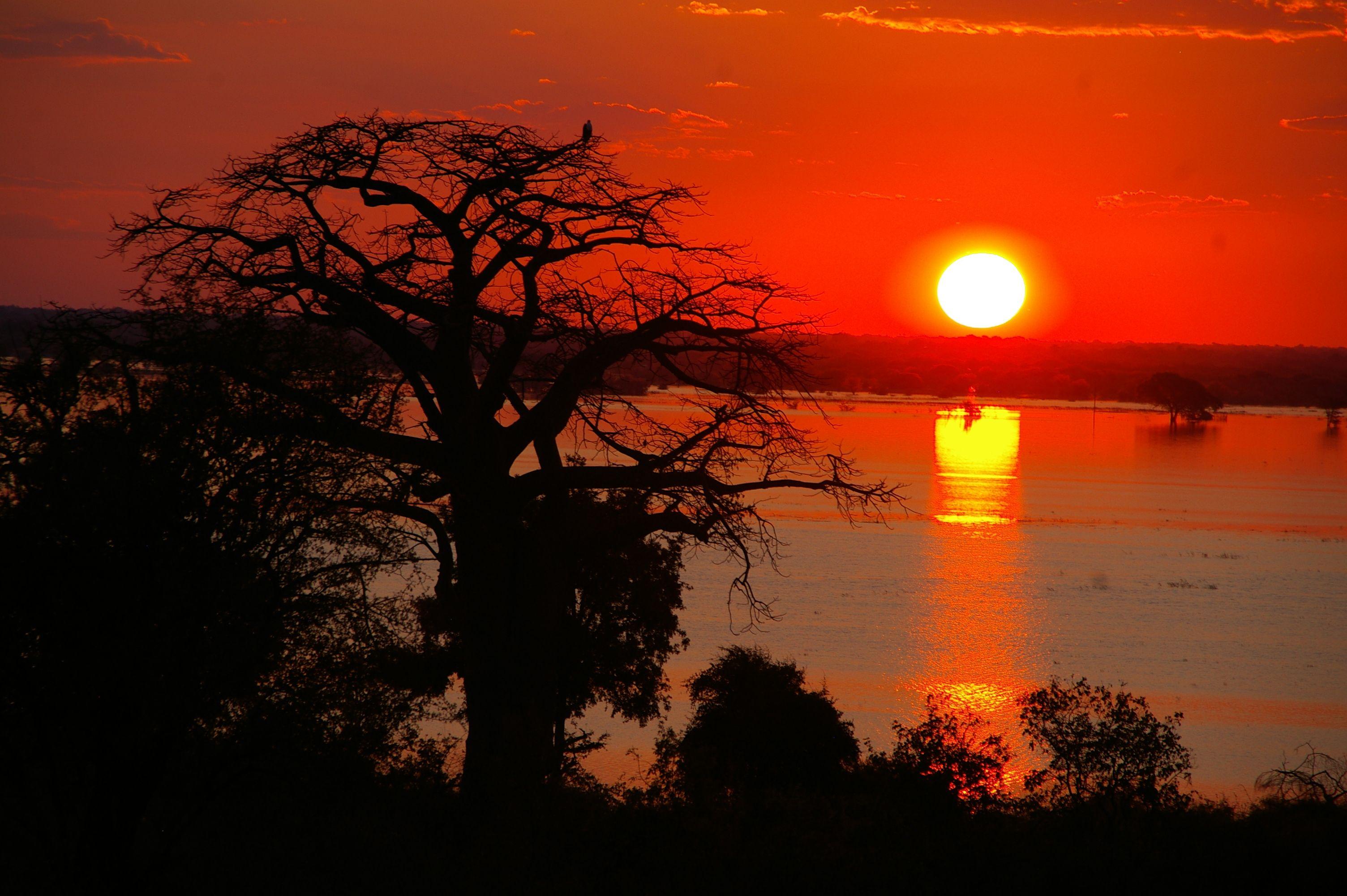 Africa - Botswana