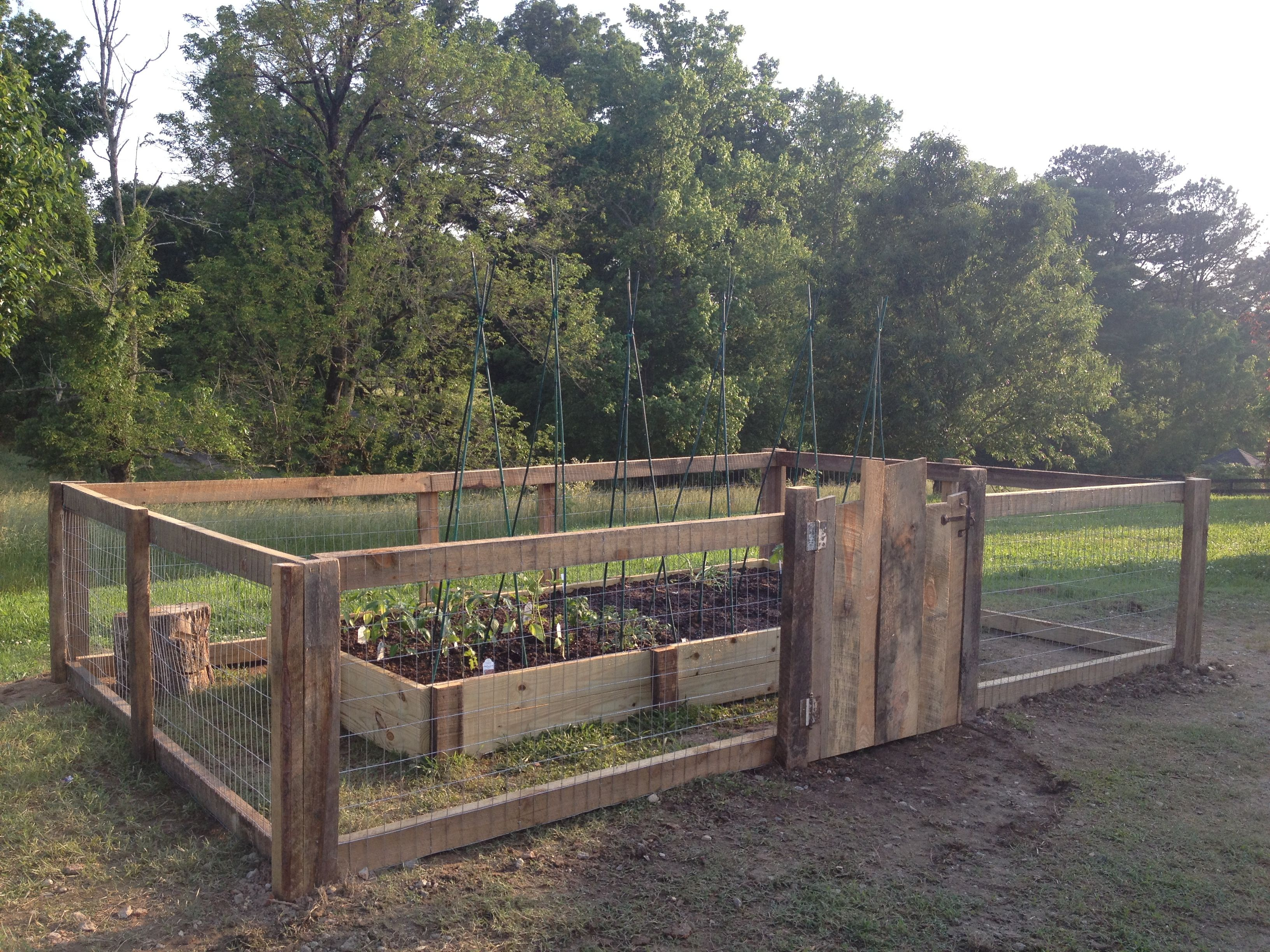 Raised garden bed and rustic fence with gate that my