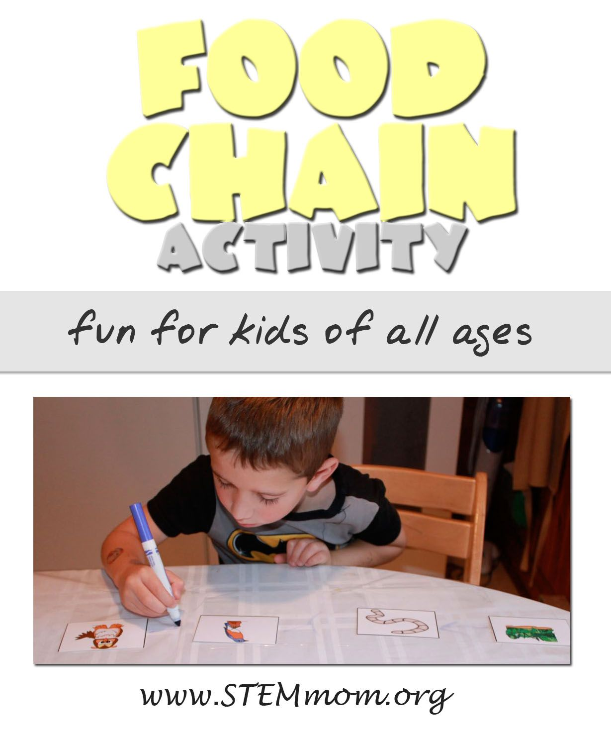 Food Chain Activity for kids from Food