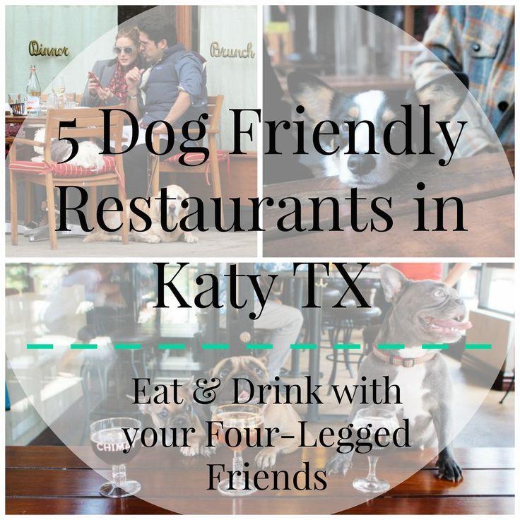 5 Dog Friendly Restaurants In Katy Texas Katy Texas Dog Friends Restaurant Houston Texas