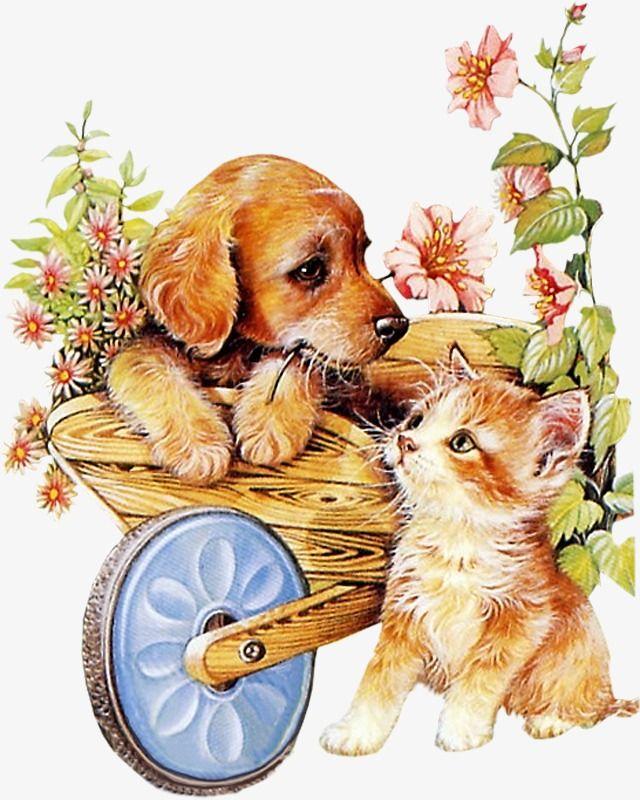 милые открытки с собаками там