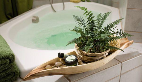 Wellness zuhause badezimmer ideen mit pflanzen holzschale mit farn flowers plants - Badezimmer mit pflanzen ...