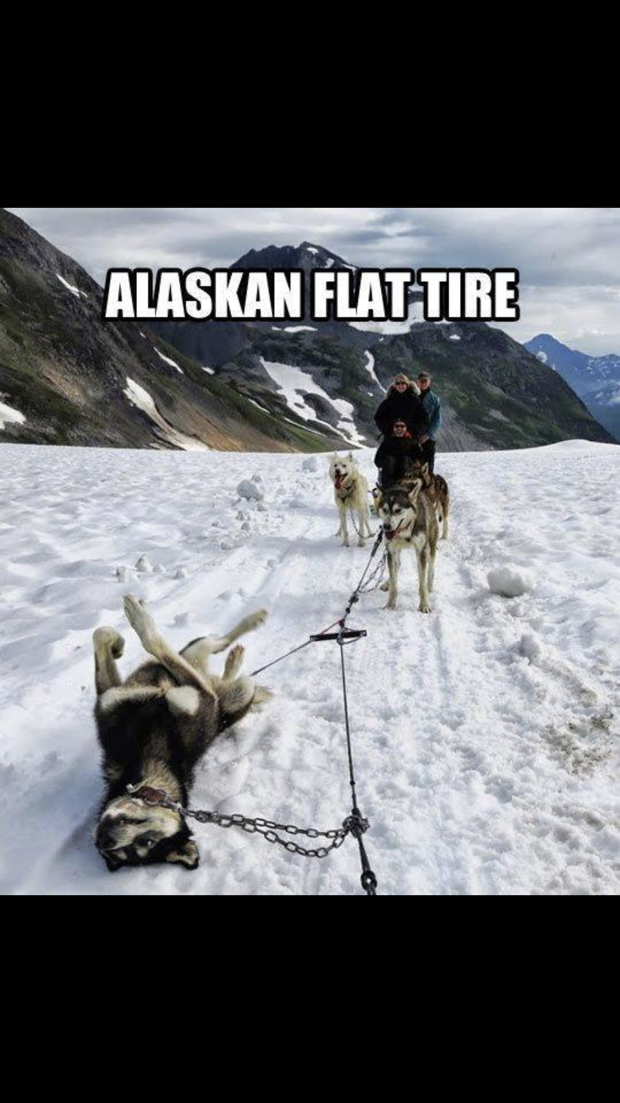 Flat Tire Meme Asparagus