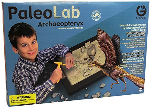 Geoworld Paleo Lab Archaeopteryx Fossil Replica Paleontologist Kit ** Want additional info? Click on the image.
